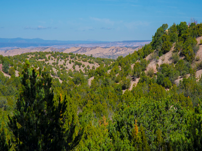 Vacation Homes in Santa Fe NM | Adobe Destinations Homes with a View